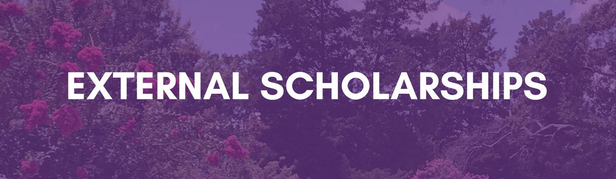 External Scholarships